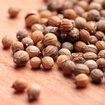 Coriander Seed - Coriandrum sativum