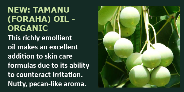 Tamanu (Foraha) Oil - Organic