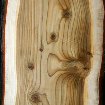 Cedarwood, Virginia   Juniperus Virginiana